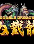 Box art - Double Dragon iPhone