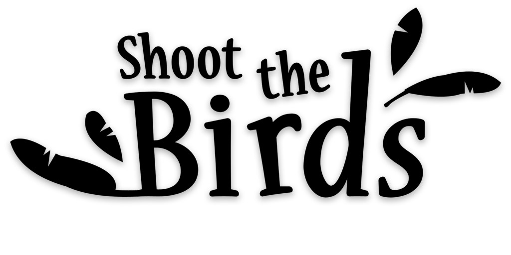 Box art - Shoot the Birds