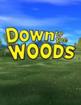 Box art - Down to the Woods