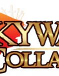 Box art - Skyward Collapse