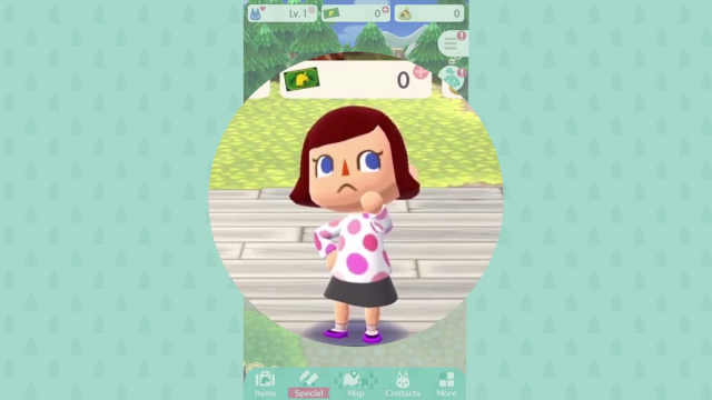 Animal Crossing Pocket Camp Clothing