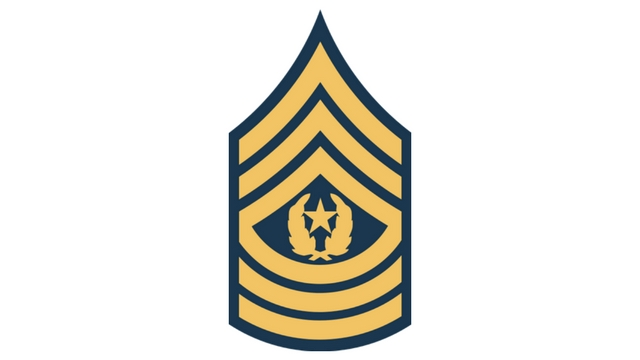 COD WW2 Command Sergeant Major Rank
