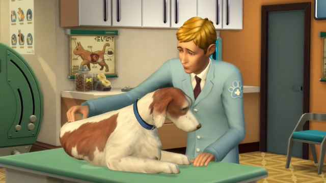 The Sims 4 Vet Career Cats and Dogs