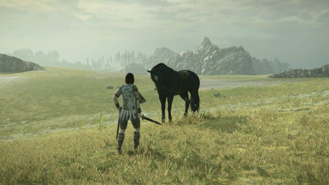 Shadow of the Colossus Agro and Wander