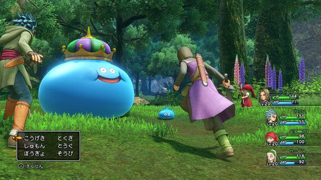 Dragon Quest 11 Multiplayer