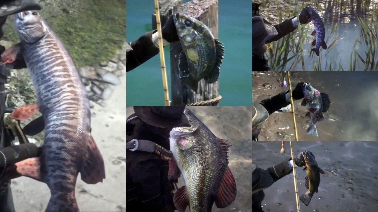 Red Dead Redemption 2 Legendary Fish Locations and Best Lures