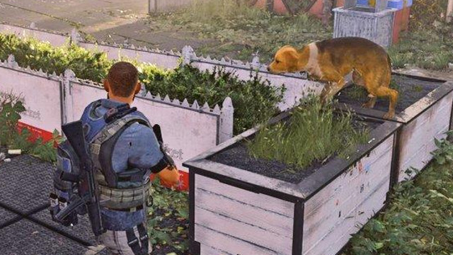 The Division 2 dogs