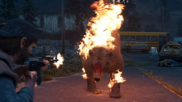 Days Gone Review Bear Fight