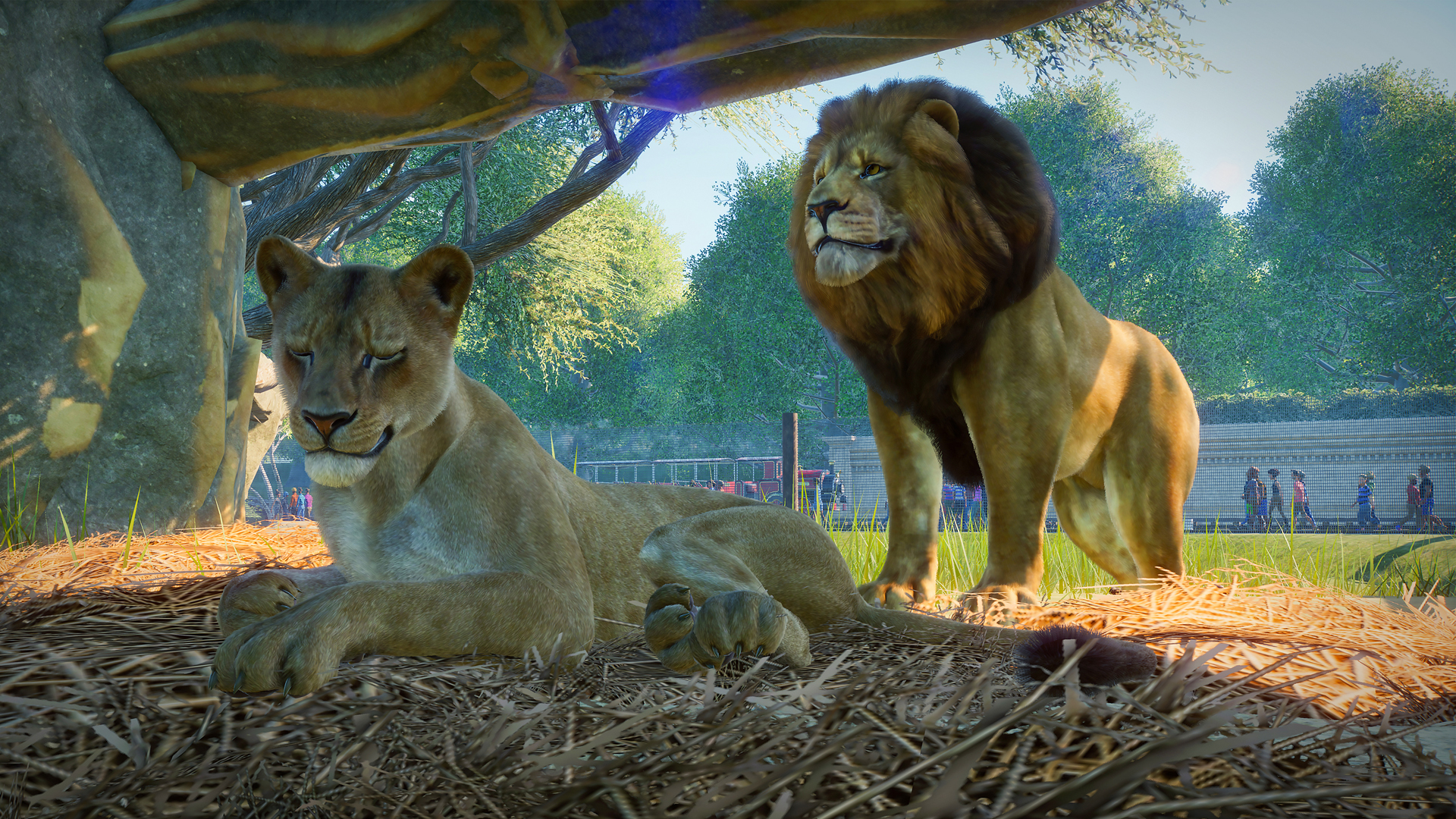 Planet Zoo release date