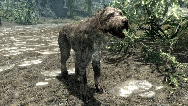 best video game dogs barbas