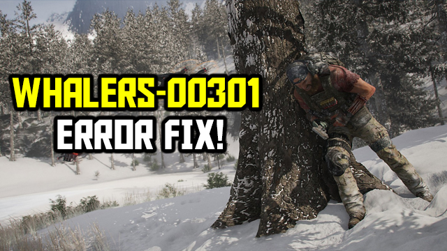 whalers 00301 error fix ghost recon breakpoint