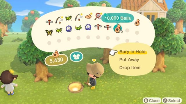 Animal Crossing: New Horizons Golden Hole