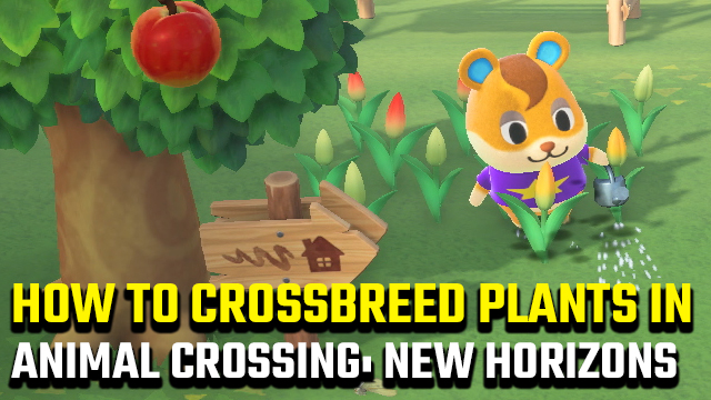 how to crossbreed plants in Animal Crossing: New Horizons