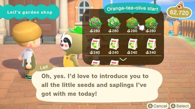 Animal Crossing: New Horizons Leif's Gardening Shop location