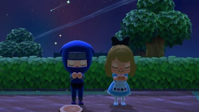 When does an Animal Crossing special NPC spawn? stars